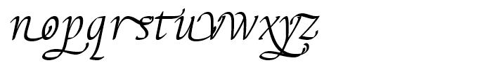 EF Elysa Light Italic Swash 2 Font LOWERCASE