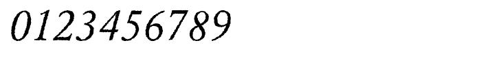 EF Garamond Rough H Regular Italic Font OTHER CHARS