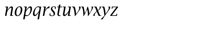 EF Lucida Bright Narrow T Italic Font LOWERCASE