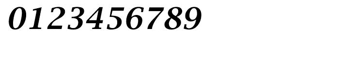 EF Lucida Bright Turkish Demi Bold Italic Font OTHER CHARS