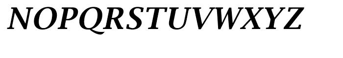 EF Lucida Bright Turkish Demi Bold Italic Font UPPERCASE