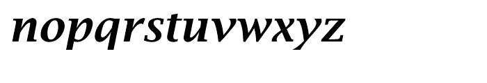 EF Lucida Bright Turkish Demi Bold Italic Font LOWERCASE