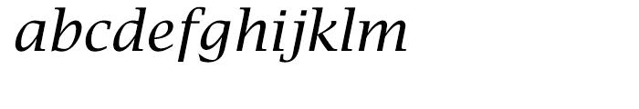 EF Lucida Bright Turkish Roman Italic Font LOWERCASE