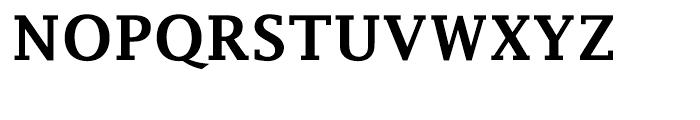 EF Lucida Fax Turkish Demi Bold Font UPPERCASE