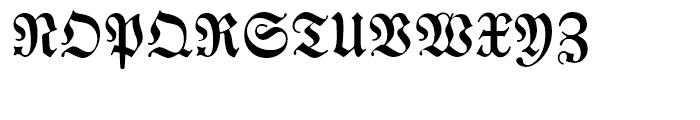 EF Neue Luthersche Fraktur Medium Alt Font UPPERCASE