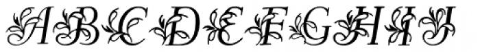Egmontian Font LOWERCASE