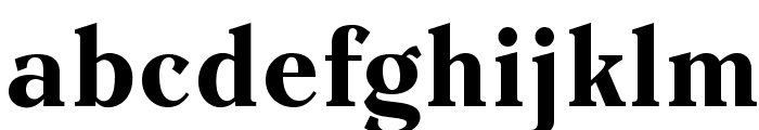EinsteinOpti-Bold Font LOWERCASE
