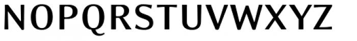 Eidetic Modern Bold Font UPPERCASE