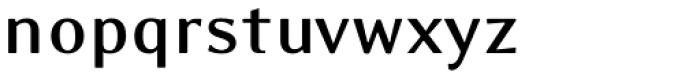 Eidetic Modern Bold Font LOWERCASE