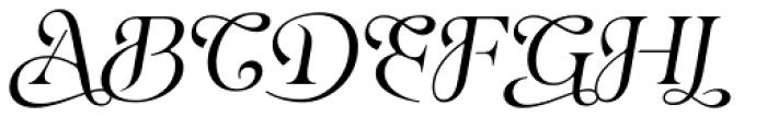 Eirlys Swash Italic Font UPPERCASE