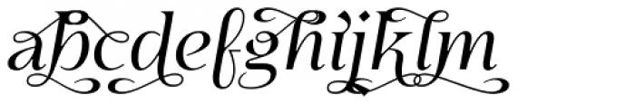 Eirlys Swash Italic Font LOWERCASE