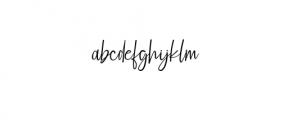 Elegant Fashion script.woff Font LOWERCASE