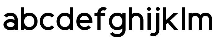 ElliotSans-Medium Font LOWERCASE