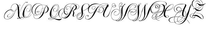 Ellida Bold Font UPPERCASE