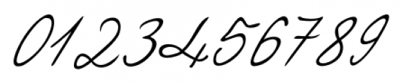 Eleanor Handwriting Regular Font OTHER CHARS