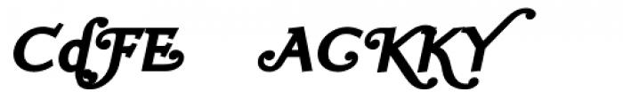 Ela Swashes Black Italic Font OTHER CHARS