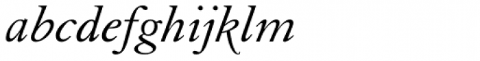 Elegant Garamond Italic Font LOWERCASE