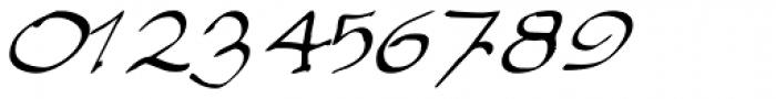 Elegant Hand Script Font OTHER CHARS
