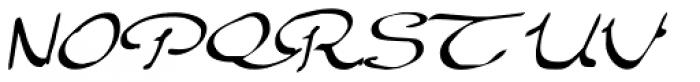 Elegant Hand Script Font UPPERCASE