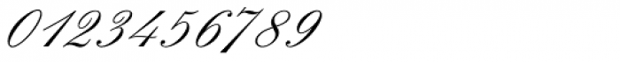 Elegant Script Pro Font OTHER CHARS