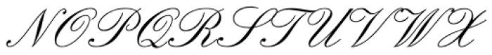 Elegant Script Pro Font UPPERCASE