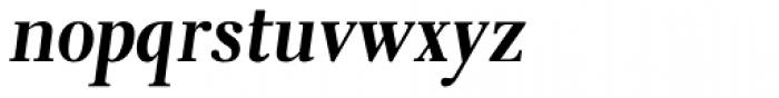 Eleonora Bold Oblique Font LOWERCASE