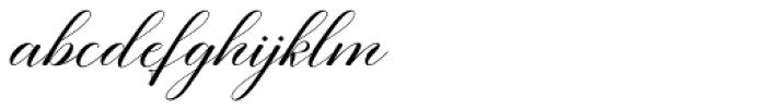 Eliyamoli script Regular Font LOWERCASE