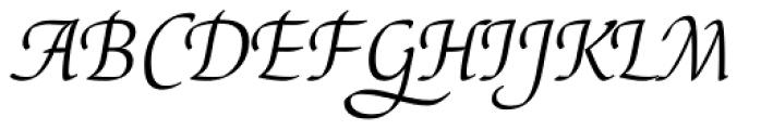 Elysa EF Light Italic Sw2 Font UPPERCASE