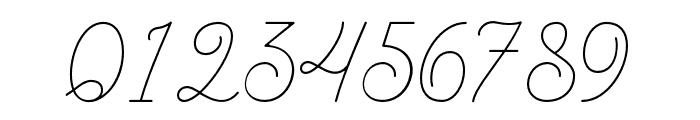 BraydenScript-Thin Font OTHER CHARS