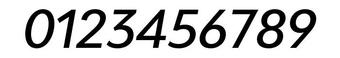 Bw Modelica SS01 Medium Italic Font OTHER CHARS