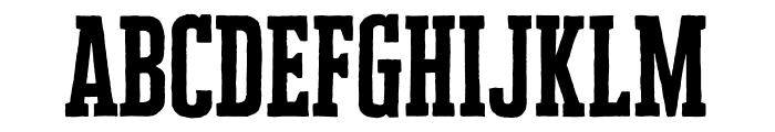 Cheddar Gothic Slab Regular Font LOWERCASE