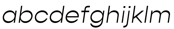 Gopher Text Light Italic Font LOWERCASE