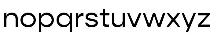 Gopher Text Regular Font LOWERCASE