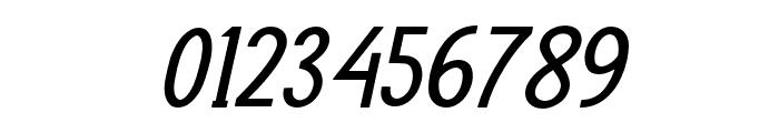 PRUISTINSANSIt-Italic Font OTHER CHARS