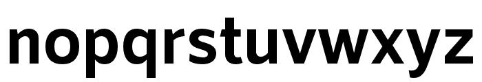 RNSSanz-Bold Font LOWERCASE