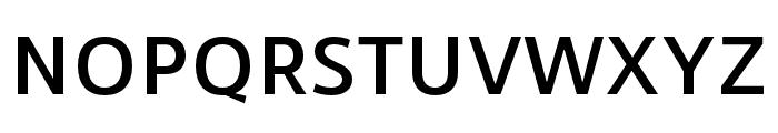 RNSSanz-SemiBold Font UPPERCASE