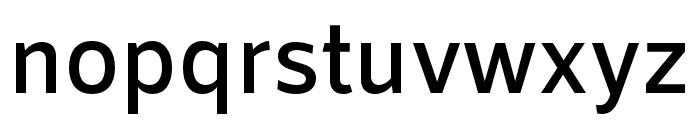 RNSSanz-SemiBold Font LOWERCASE