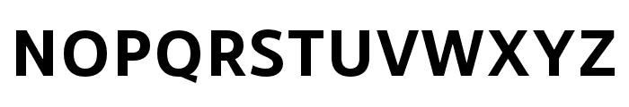 RNSSanzSC-Bold Font UPPERCASE
