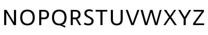 RNSSanzSC-Medium Font UPPERCASE