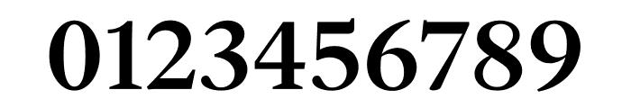 English 1766 Medium Font OTHER CHARS