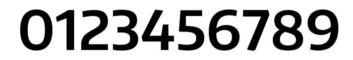 Encode Sans SemiBold Font OTHER CHARS