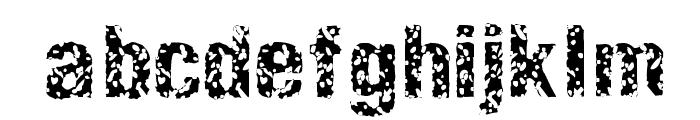 EnemaLight Font LOWERCASE