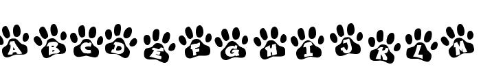 EnnobledPet-Regular Font LOWERCASE
