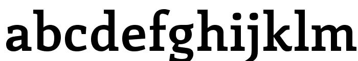 Enriqueta-Bold Font LOWERCASE