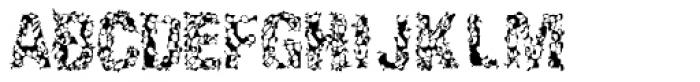 Enema ExtraLight Font UPPERCASE