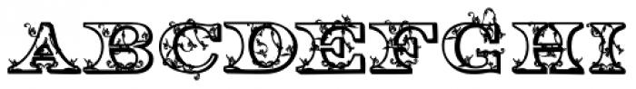 Engel2 Font LOWERCASE