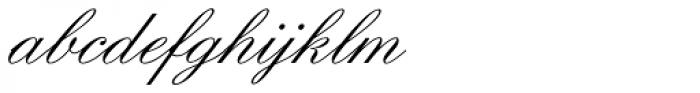Englische Schoolbook Joined Font LOWERCASE