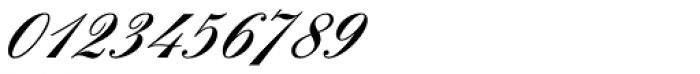 Englische Schreibschrift BQ Two Medium Font OTHER CHARS