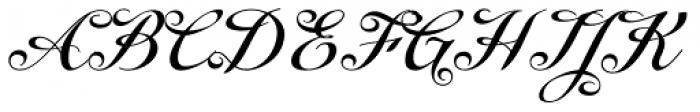 Enocenta Bold Font UPPERCASE