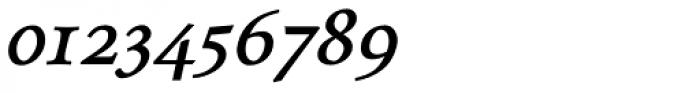 Envoy Bold Italic Font OTHER CHARS
